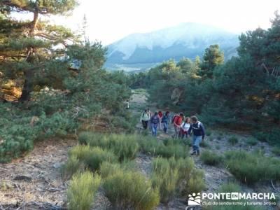Pico Perdiguera, grupo trekking comunidad de madrid; madrid singles